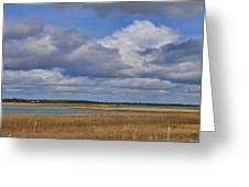 Autumn Marsh At Shell Island Greeting Card
