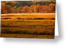 Autumn Marsh Greeting Card