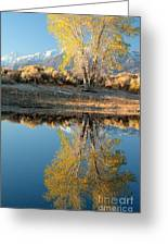 Autumn Mirrored Greeting Card
