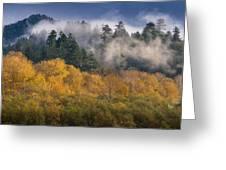 Autumn Mists Greeting Card