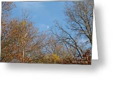 Autumn Moonrise Greeting Card