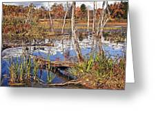 Autumn Morning At The Marsh Greeting Card