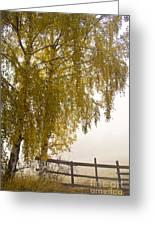 Autumn Morning Greeting Card