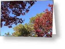 Autumn Mosaic Greeting Card