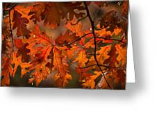 Autumn Oak Greeting Card