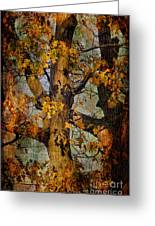 Autumn Oaks In Dance Mode Greeting Card