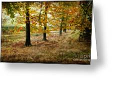 Autumn On Cannock Chase Greeting Card