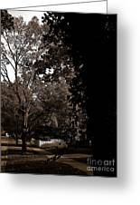 Autumn On Maple Road Greeting Card