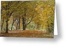 autumn on Moenchsberg in Salzburg Greeting Card