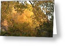 Autumn On The Bosque Greeting Card