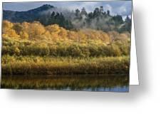 Autumn On The Klamath 4 Greeting Card