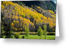 Autumn On The Links Greeting Card