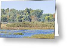 Autumn On The Marsh Greeting Card