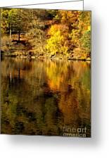Autumn On Ullswater Greeting Card
