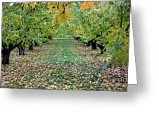 Autumn Orchard Greeting Card