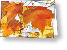 Autumn Outside My Window Greeting Card
