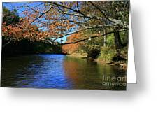 Autumn Paddle On The Quinnebaug  Greeting Card