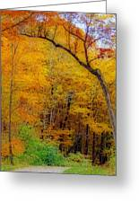 Autumn Peak Colors Greeting Card