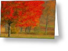 Autumn Popping Greeting Card