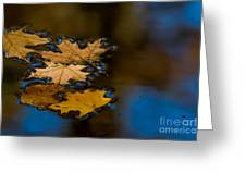 Autumn Puddle Greeting Card