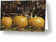 Autumn Pumpkins Greeting Card by Amanda Elwell