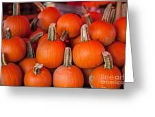 Autumn Pumpkins Greeting Card