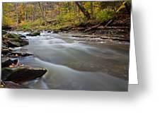 Autumn Rapids Greeting Card