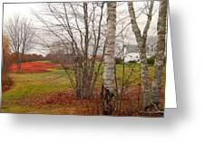 Autumn Red Field Maine  Greeting Card