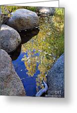 Autumn Reflection Greeting Card