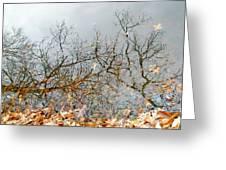 Autumn Reflections On Alloway Lake Nj Greeting Card