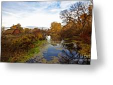 Autumn Remnants Greeting Card