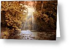 Autumn River Light Greeting Card by Jessica Jenney