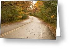 Autumn Road II Greeting Card