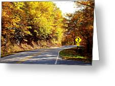 Autumn Road Greeting Card by Mary Koval