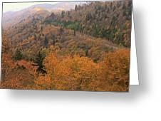Autumn Roads Greeting Card