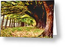Autumn Shelter Greeting Card