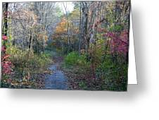 Autumn Silence No.2 Greeting Card