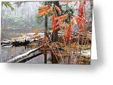 Autumn Snow Cranberry River Greeting Card