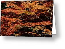 Autumn Solarisation 1 Greeting Card