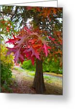 Autumn Splendor Greeting Card by Mamie Thornbrue