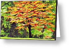 Autumn Splendor Greeting Card by Patricia Griffin Brett