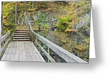 Autumn Steps Near Smalls Falls In Maine Greeting Card