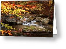 Autumn Stream Square Greeting Card