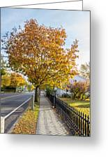 Autumn Stroll In Mystic Greeting Card