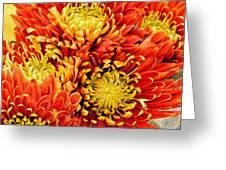 Autumn Sunrise Bouquet Greeting Card
