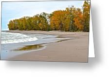 Autumn Tides Greeting Card