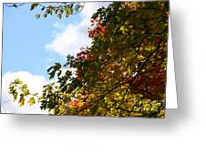 Autumn To Perfection Greeting Card