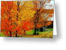 Autumn Trees By Barn Greeting Card
