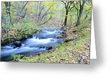 Autumn Tributary Greeting Card