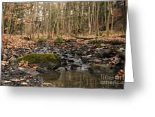 Autumn Tributary Path Greeting Card
